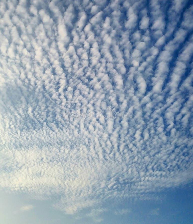 Katoenen wolken royalty-vrije stock afbeelding