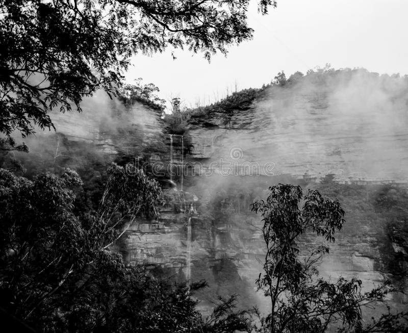Misty rainy atmosphere Blue Mountains Katoomba National Park forest landscape day monochrome stock photos