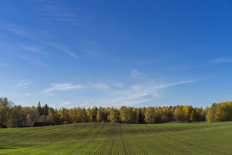 Katrineholm Σουηδία στοκ εικόνα
