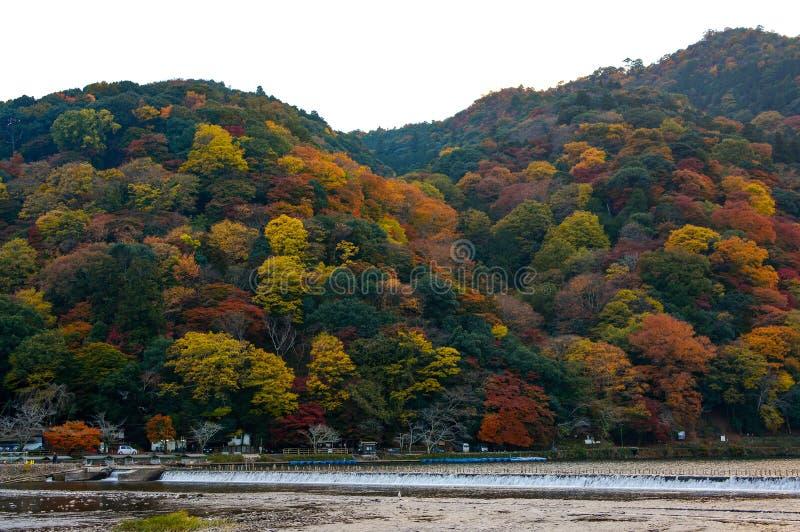 Katsura河和登上在充分的秋天颜色的Arashi在京都,日本Arashiyama区  免版税库存照片