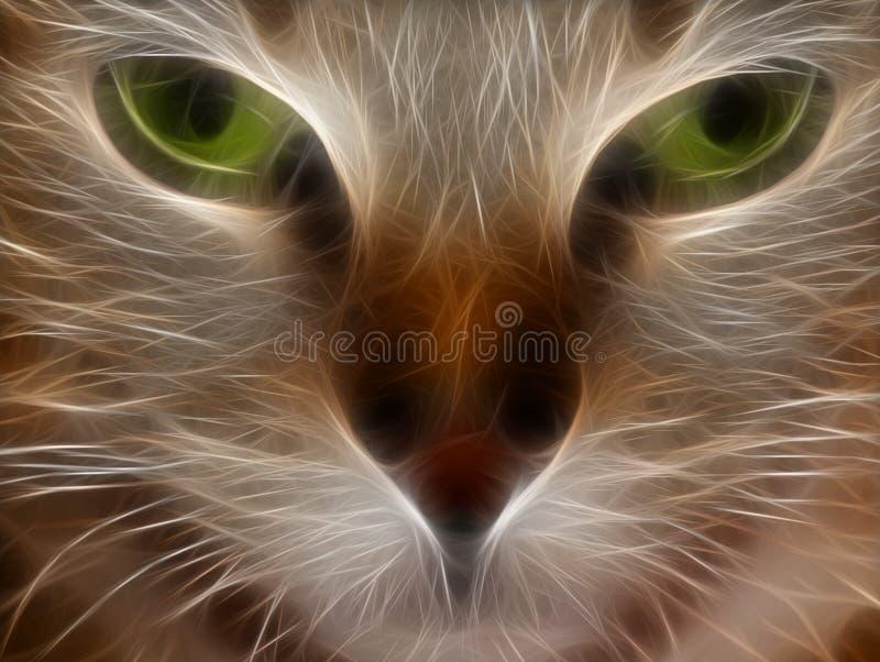 kattögon stock illustrationer