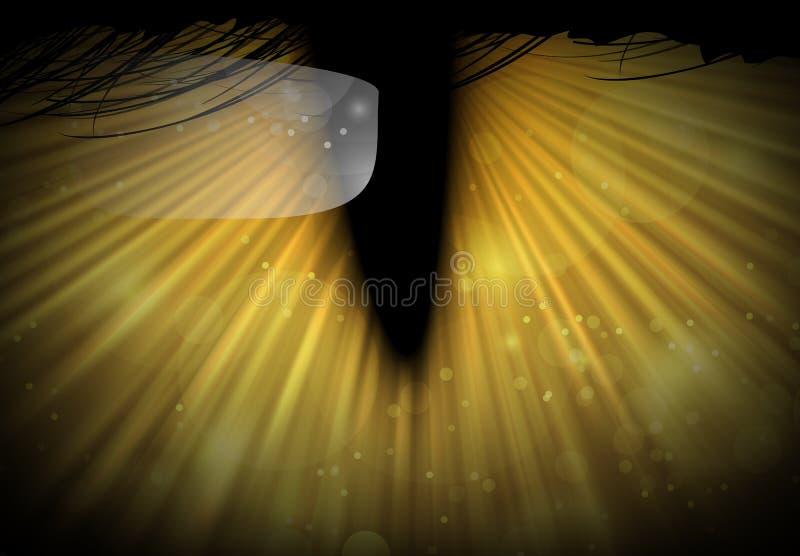 Kattögon i mörker vektor illustrationer