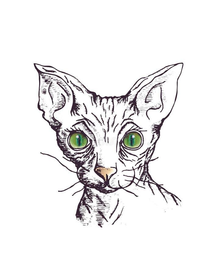 Katt av aveln sfinxen stock illustrationer