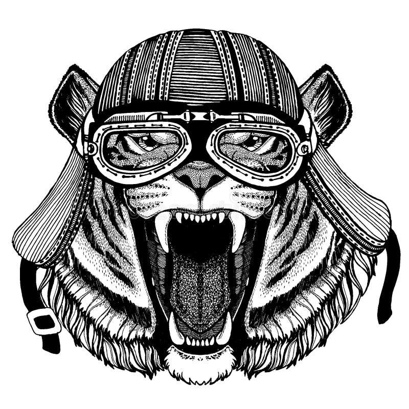 Katt för löst hjälm för motorcykel cyklistdjur för tiger bärande r royaltyfri illustrationer