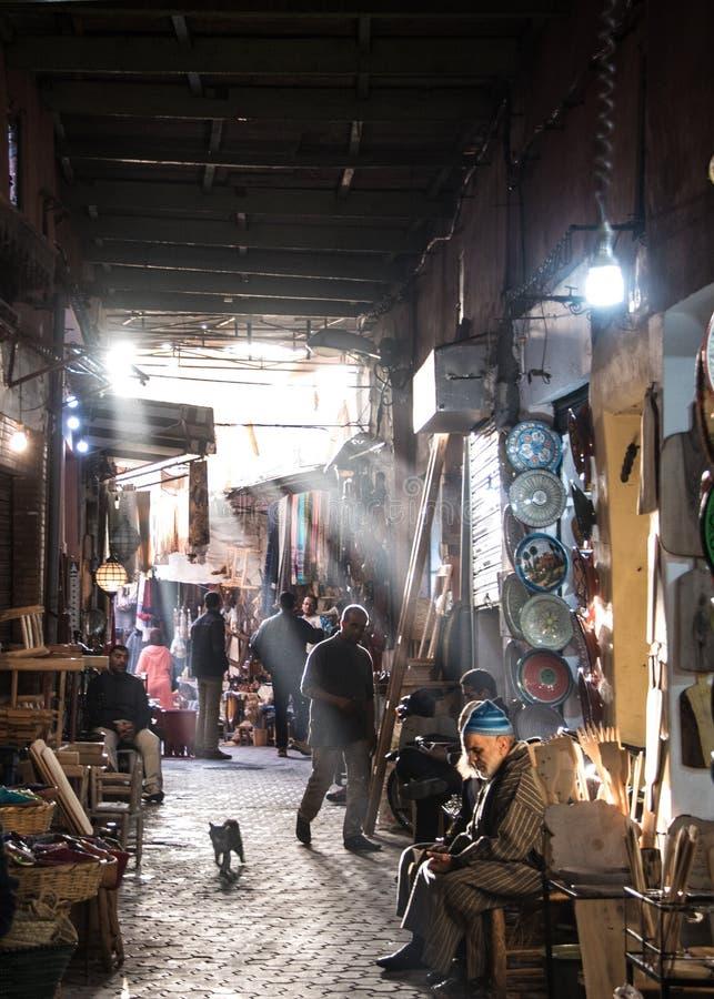 Katt i en Souk i Marrakech, med solljustryckning royaltyfria foton
