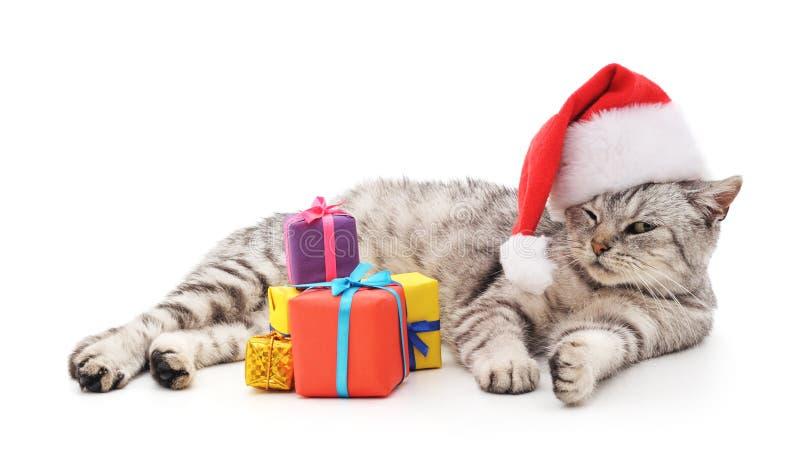 Katt i hattjultomten med julgåvor arkivbild