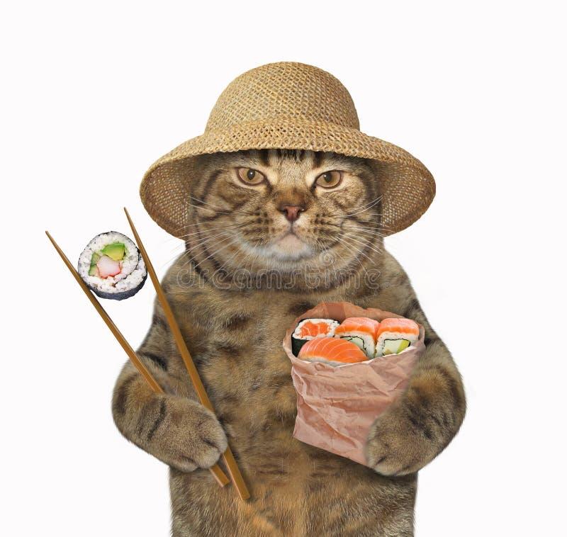 Katt med sushi och pinnar vektor illustrationer