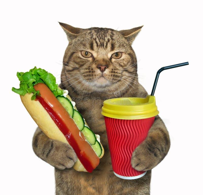 Katt med varmkorven och kaffe arkivbild