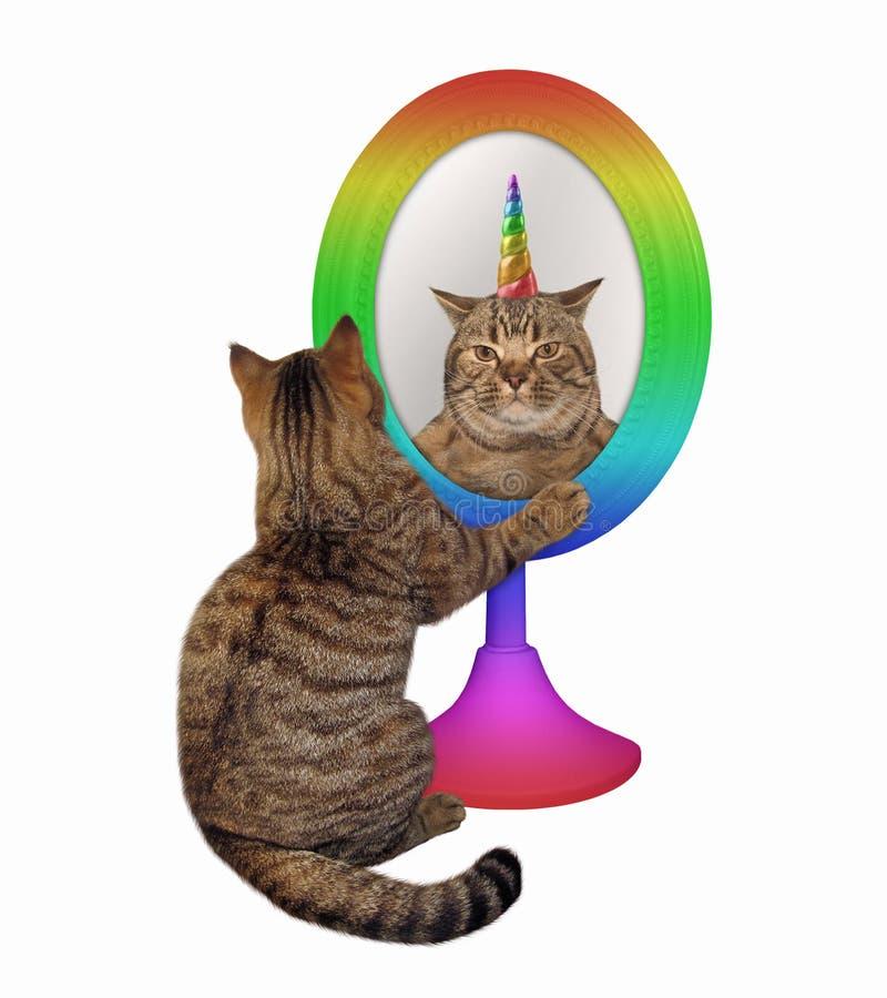 Katt och dess enhörningreflexion arkivbilder