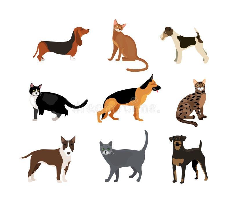 Katt- och hundkapplöpningvektorillustration royaltyfri illustrationer