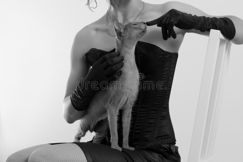 Katt och kvinna arkivbilder