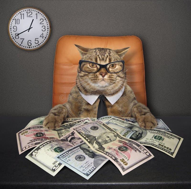 Katt på tabellen med dollar 2 arkivbild