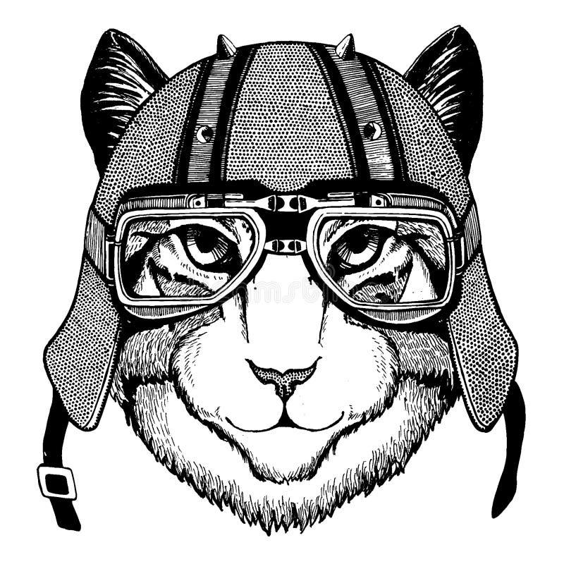 Katt som bär en motorcykel, aero hjälm Utdragen bild för hand för tatueringen, t-skjorta, emblem, emblem, logo, lapp stock illustrationer