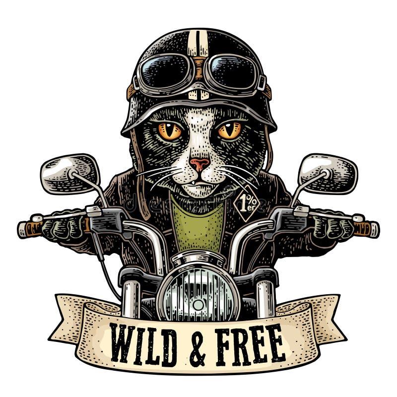 Katt som k?r ritter f?r en motorcykel Vektortappninggravyr royaltyfri illustrationer
