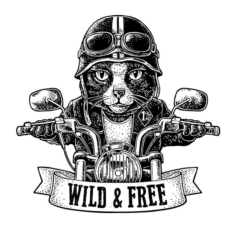 Katt som k?r ritter f?r en motorcykel Vektortappninggravyr stock illustrationer