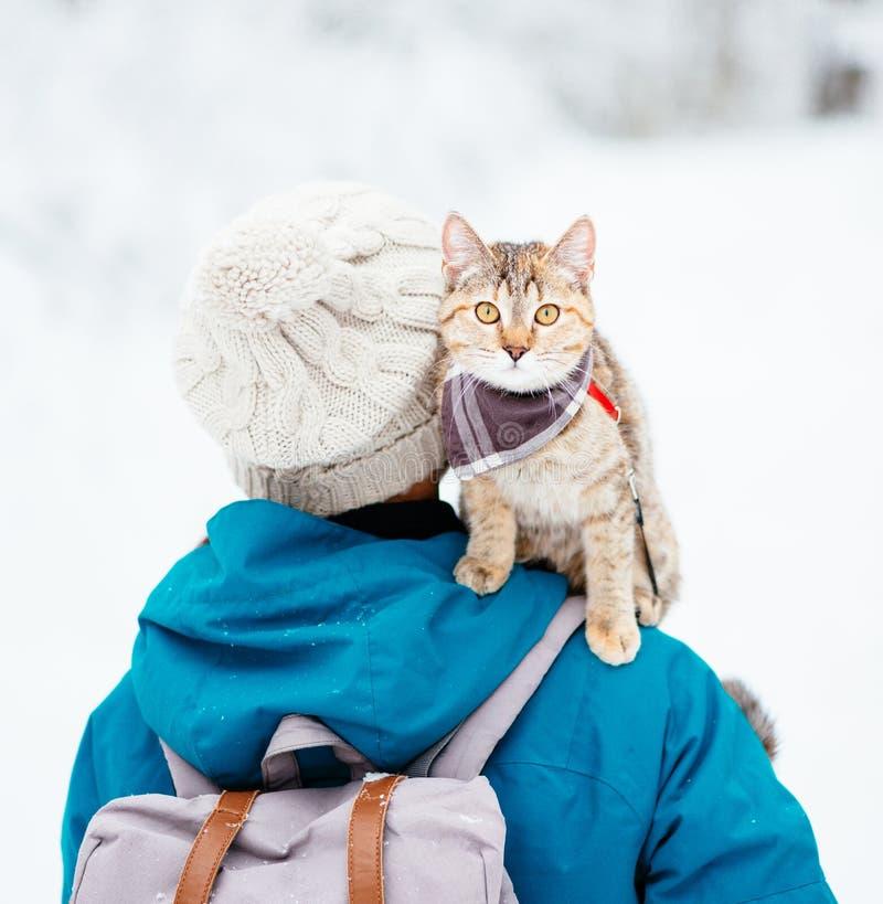 Katt som sitter på skuldra av kvinnan och stirrar på kameran arkivbild