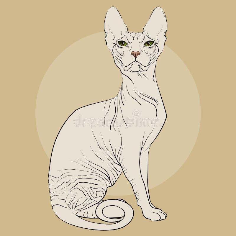 Kattavel Sphynx på en bakgrund royaltyfri illustrationer