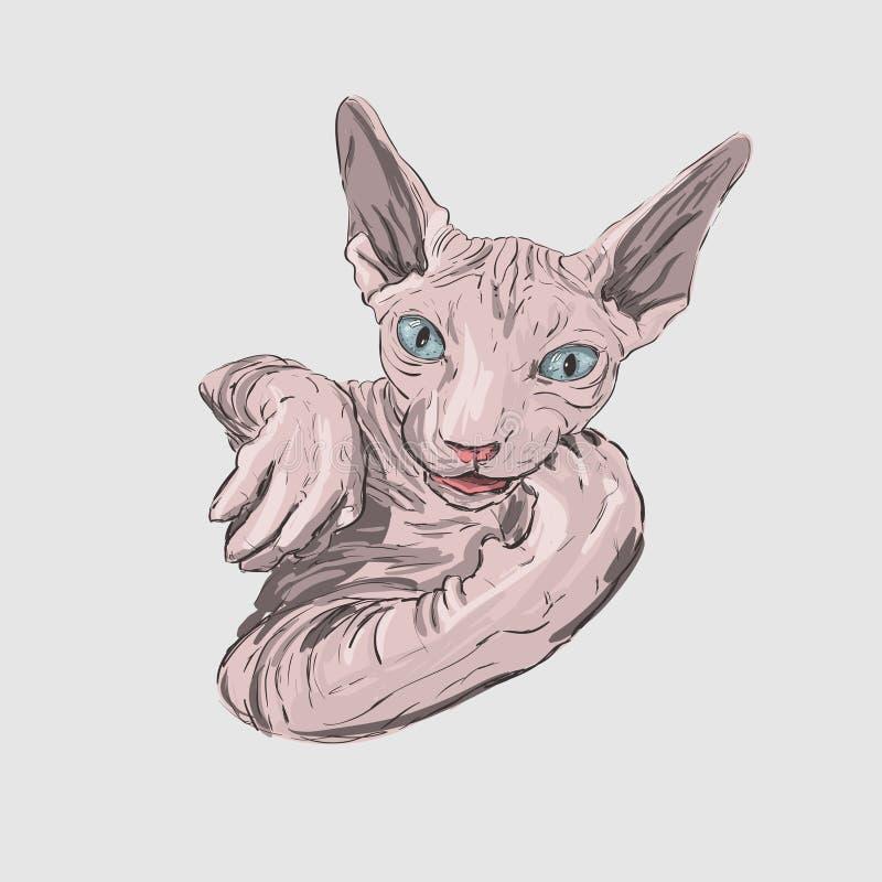 Kattaveln Sphynx vänder mot skissar illustrationen stock illustrationer
