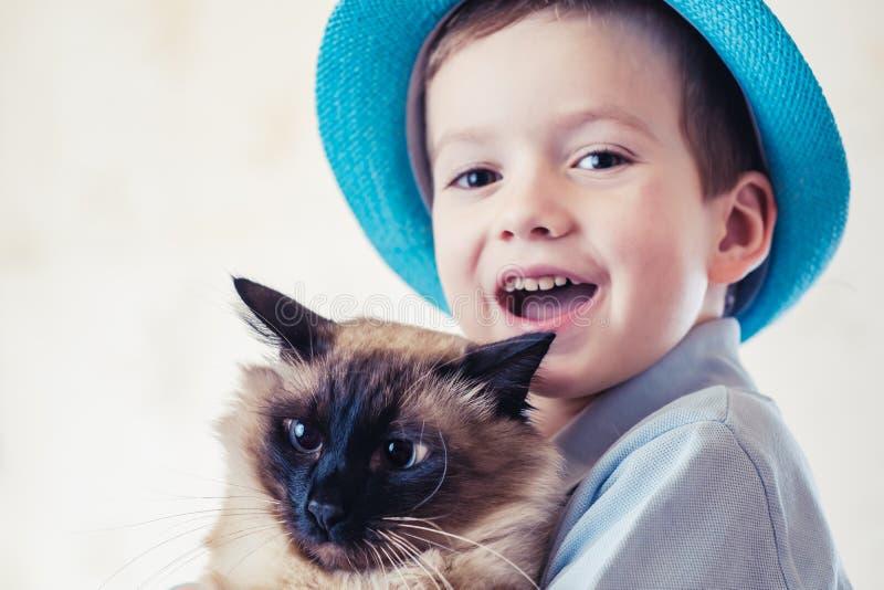 Kattbarnbalinese tillsammans att spela förälskelsecaucasian arkivbild