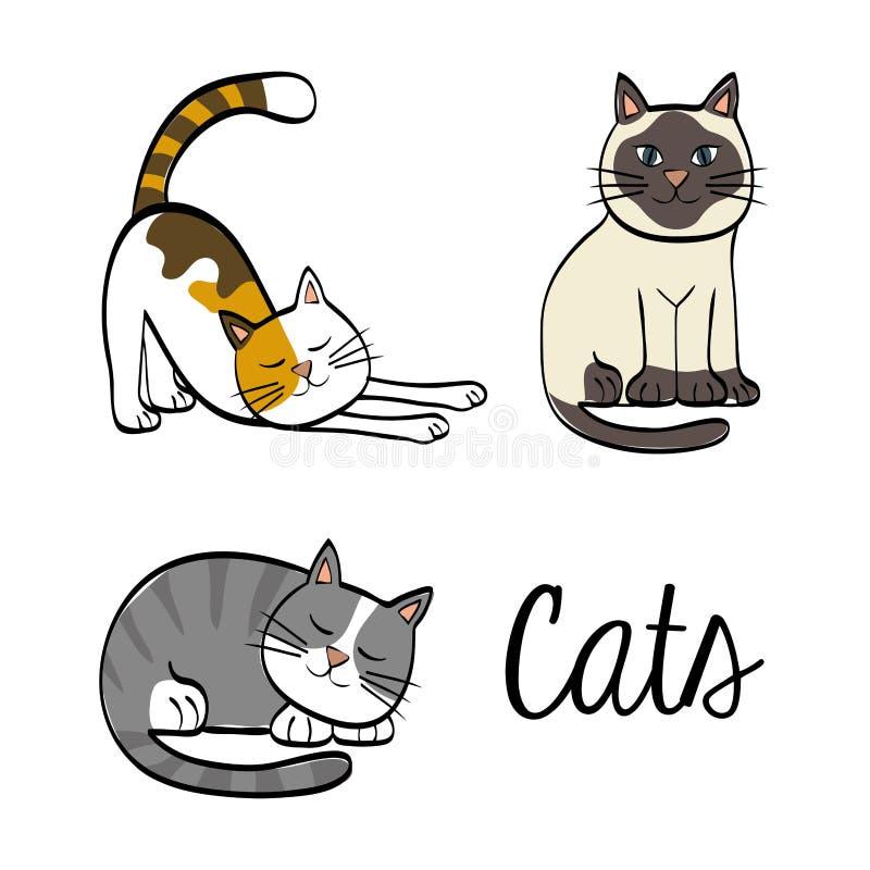 Kattdesign Djurt begrepp Plan illustration, vektor royaltyfri illustrationer