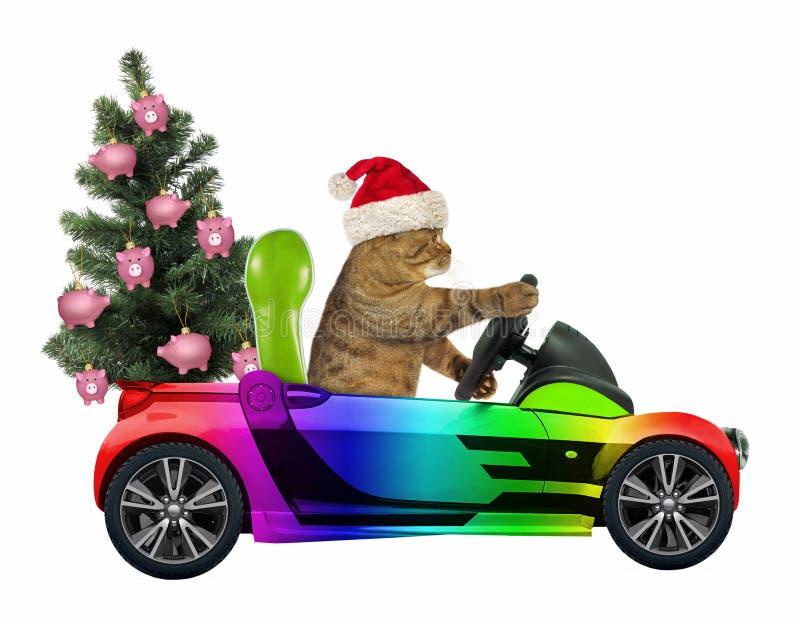 Katten bär en julgran 2 arkivbild