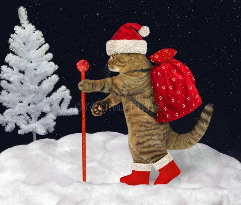 Katten bär julgåvor 3 arkivfoton