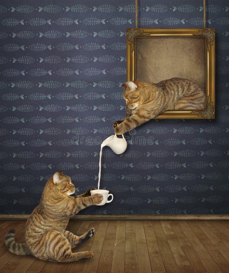 Katten behandlar dess vän med mjölkar arkivfoton