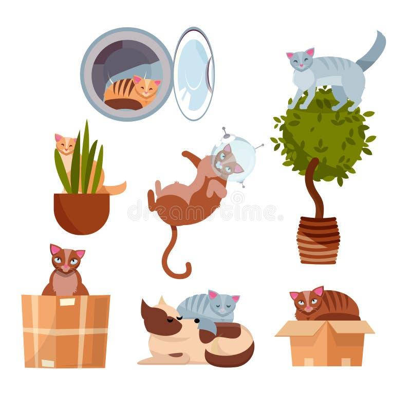 Katten in grappige plaatsen: in een doos, in een wasmachine, op een ruimtebloem, in een pot, in ruimte, die op hond slapen Een re stock illustratie