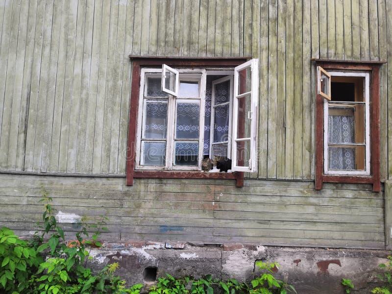 Katten in het venster van het oude huis stock afbeeldingen