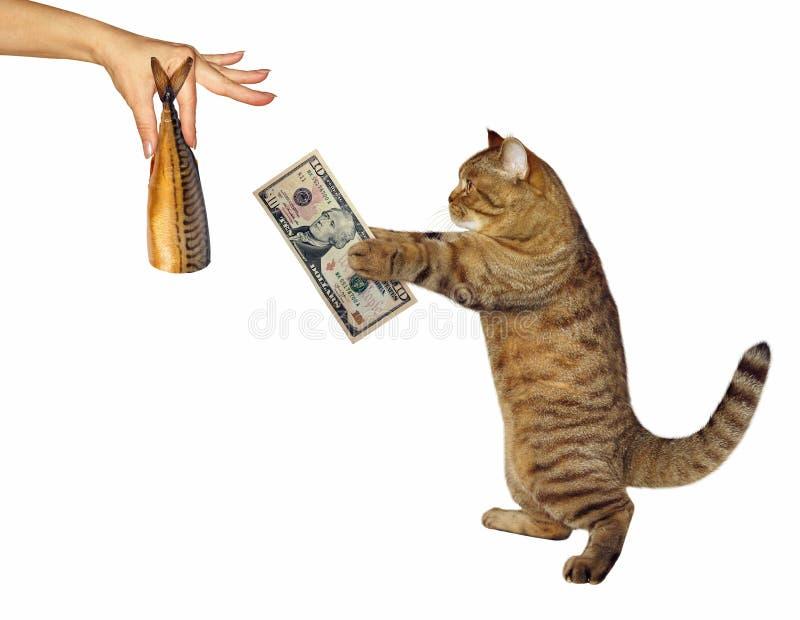 Katten köper en rökt fisk royaltyfri fotografi