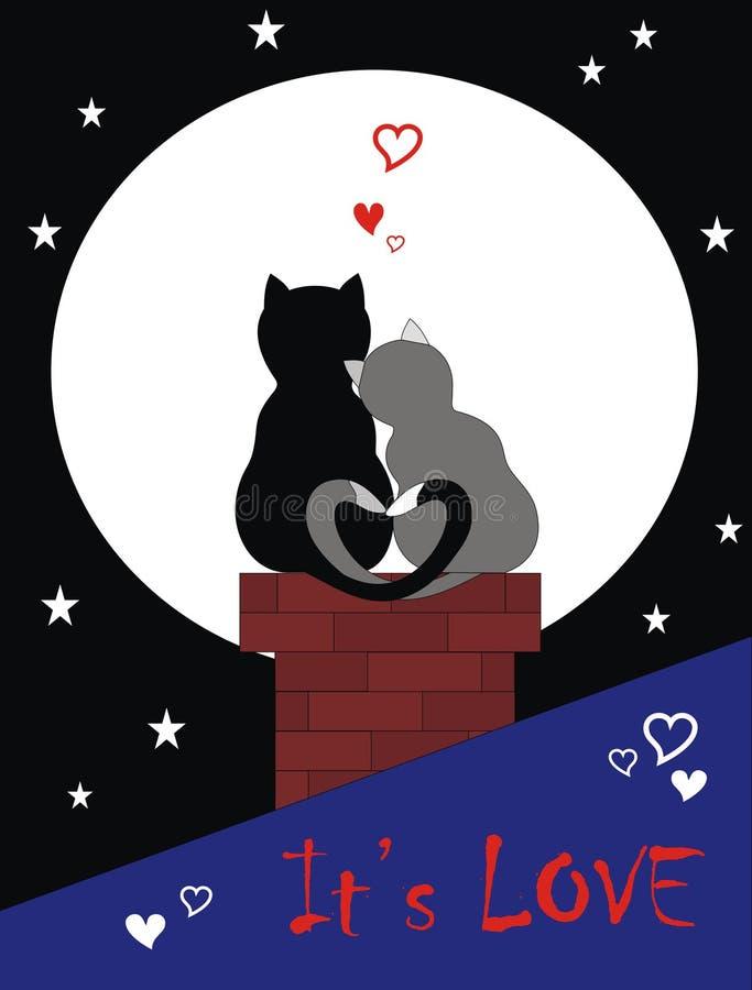 Katten in liefde vector illustratie