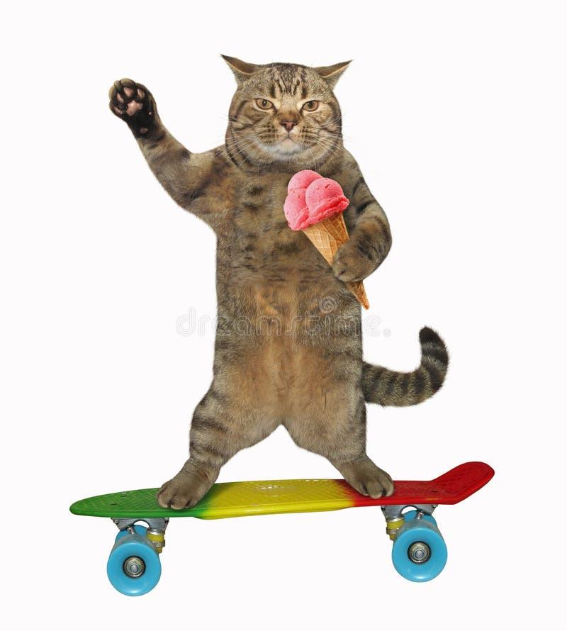 Katten med glass rider en skateboard royaltyfria foton