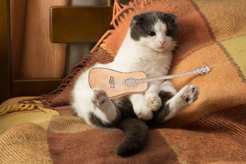 Katten med miniatyrpappersgitarren sitter på sängen arkivfoton