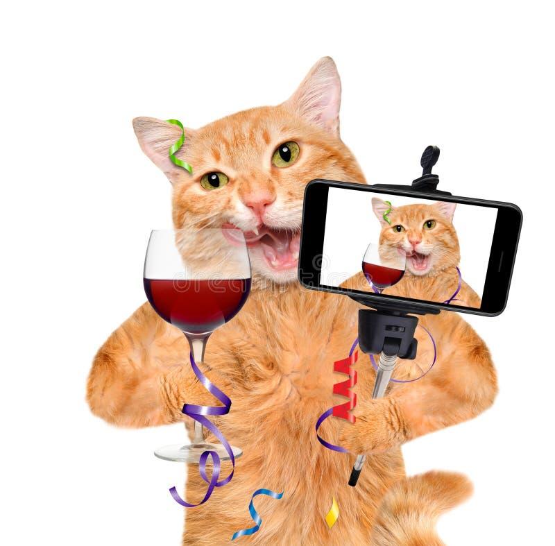 Katten rymmer ett exponeringsglas av vin och att fira arkivfoton