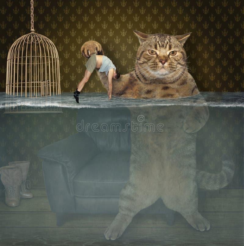 Katten sparar hans husdjur arkivfoton