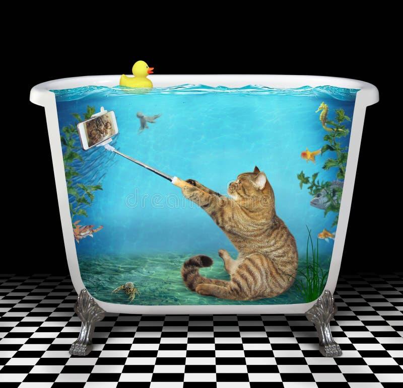 Katten tar en selfie som är undervattens- i badkaret royaltyfri foto