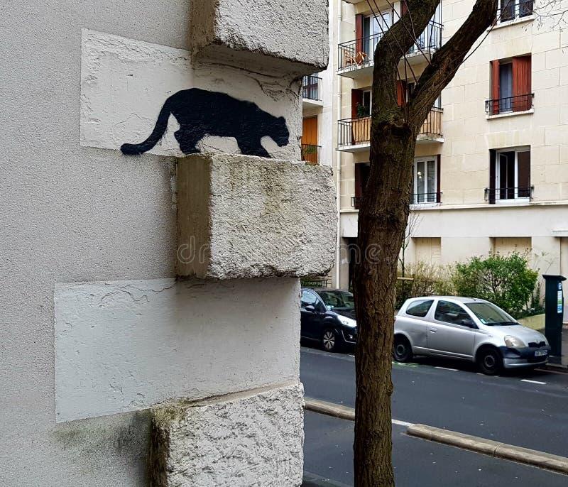 Katten väntar på dig royaltyfri foto