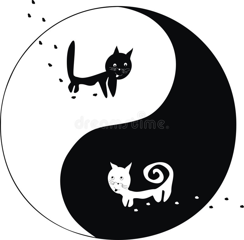 Katten. Ying en Yang. stock illustratie