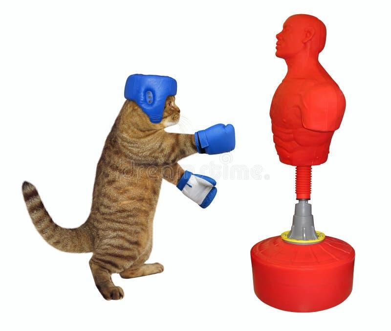 Kattenbokser die ponsenzak 2 raken royalty-vrije stock fotografie