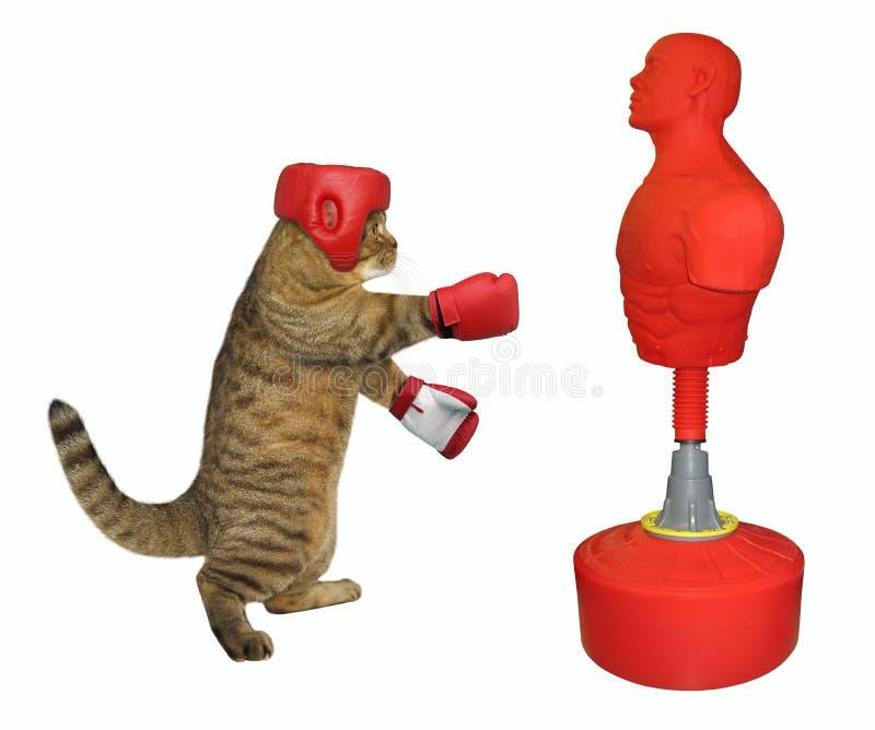 Kattenbokser die ponsenzak raken royalty-vrije stock afbeeldingen