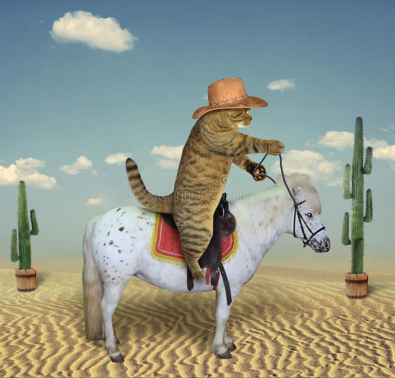 Kattencowboy op een paard 3 stock illustratie