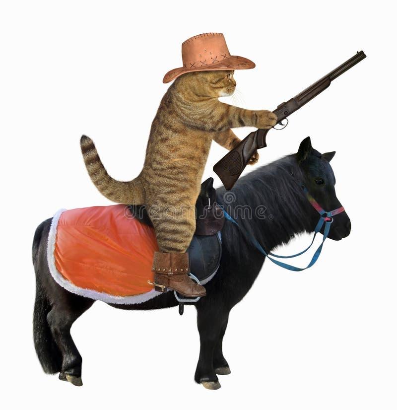 Kattencowboy op een zwart paard stock foto's