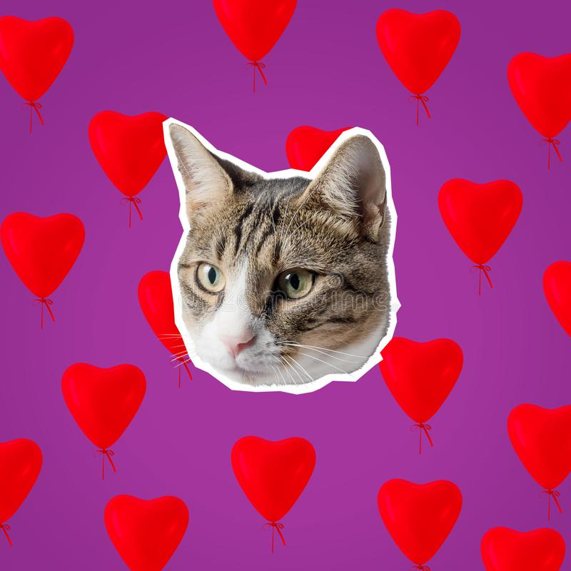Kattenhoofd met heldere hartencollage, pop-artconceptontwerp Minimale liefdeachtergrond stock afbeelding