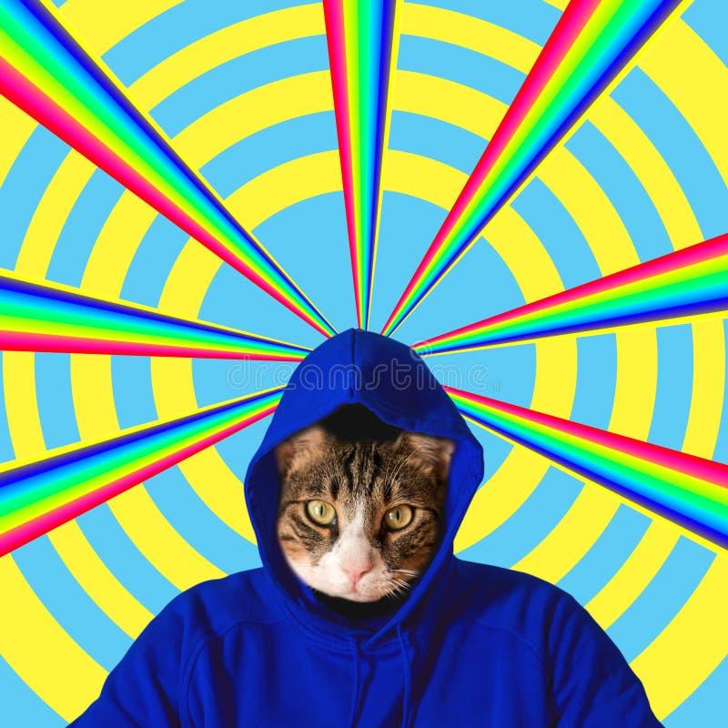 Kattenhoofd met regenboog, het conceptontwerp van het collagepop-art Minimale de zomerachtergrond stock afbeelding