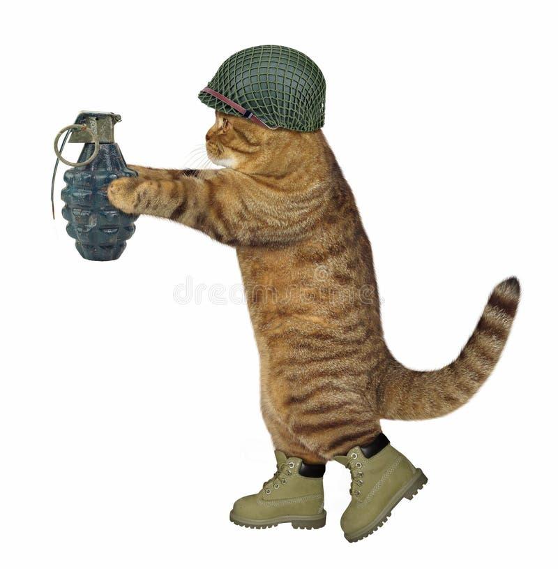 Kattenmilitair met granaat 2 stock afbeeldingen