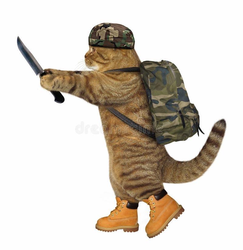 Kattenmilitair met mes royalty-vrije stock afbeeldingen
