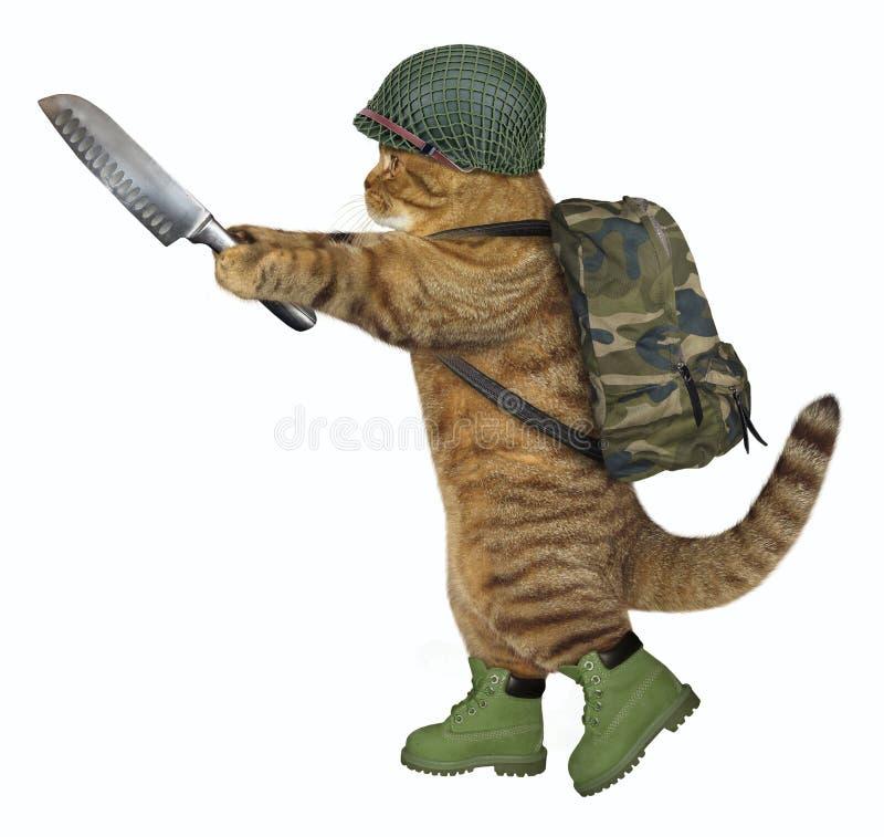 Kattenmilitair met slagersmes stock afbeelding