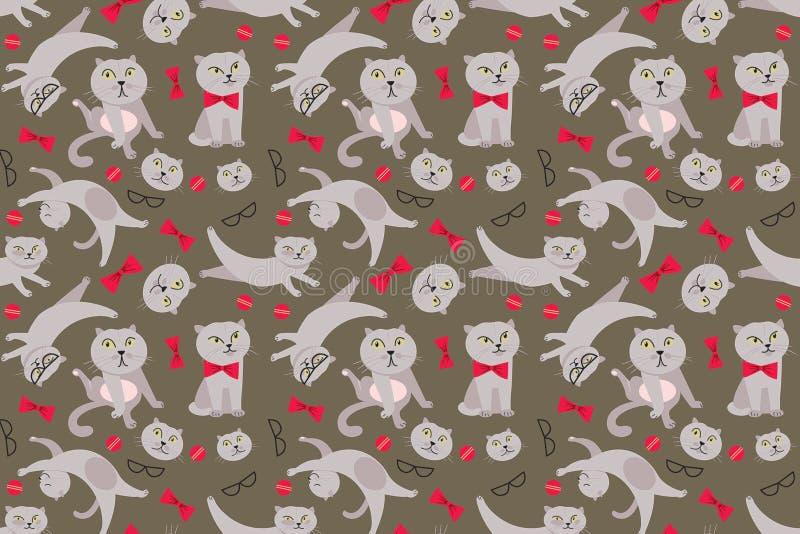 Kattenpatroon royalty-vrije stock afbeeldingen
