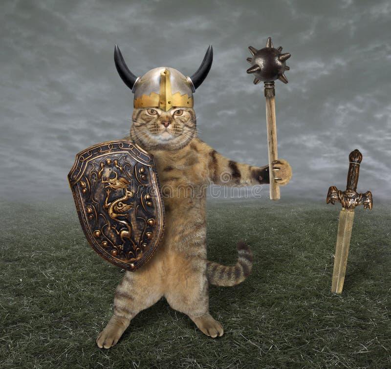 Kattenstrijder op gebied stock illustratie