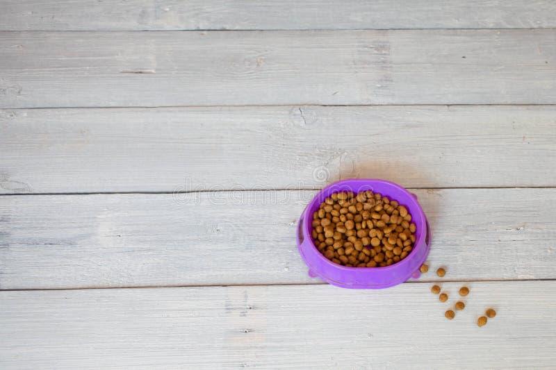 Kattenvoedsel in kom stock afbeeldingen